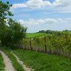 The countryside of southern England is as pretty as it gets, including this path near one of our overnight stays.
